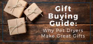 Gift Buying Guide: Why Pet Dryers Make Great Gifts