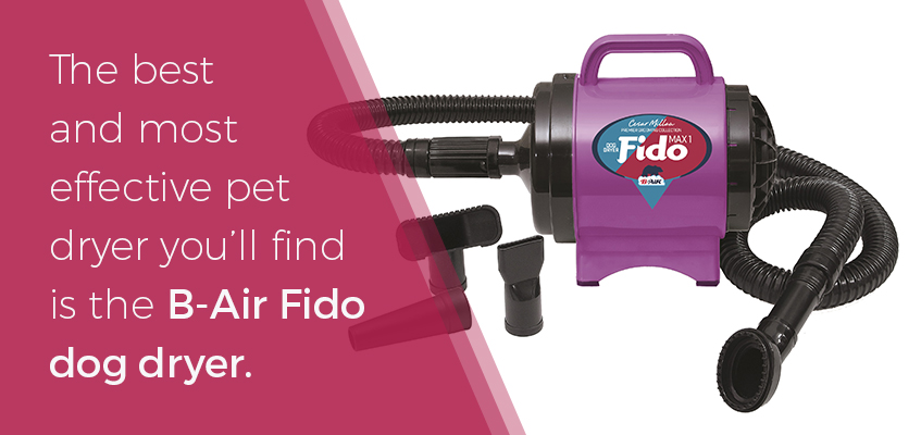 Fido dog dryer the most effective dryer on the market