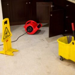 VP25 air mover drying bathroom floor