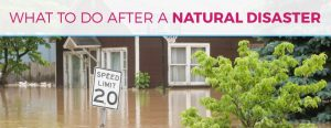 What to Do After a Natural Disaster
